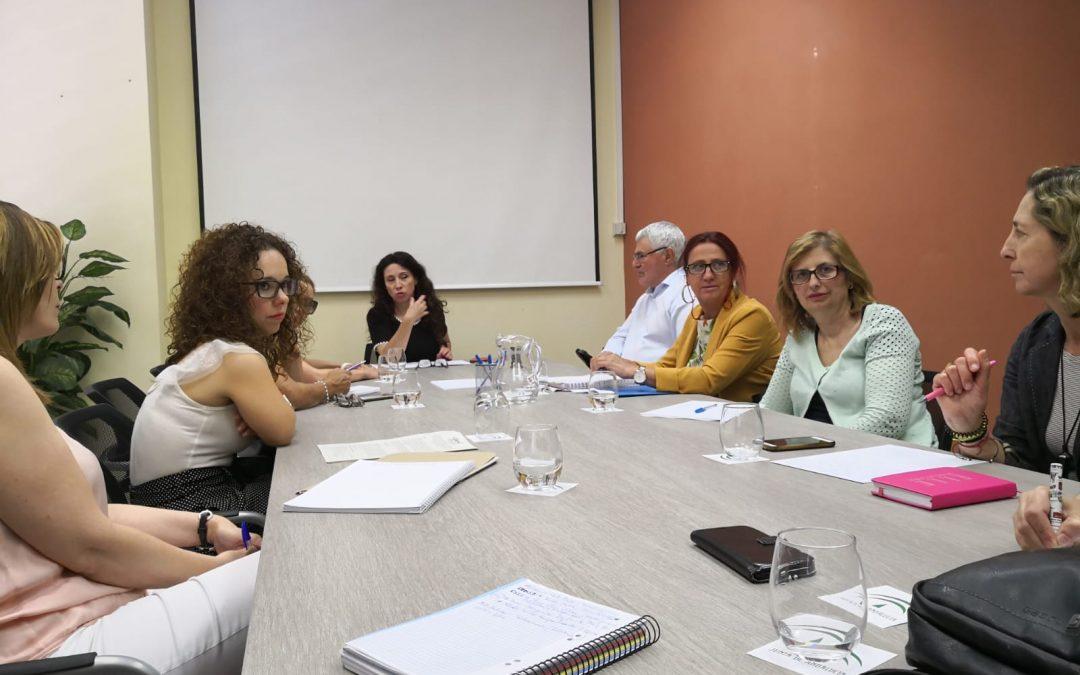 El nuevo equipo directivo del Cermi Andalucía se presenta a la Consejera de Igualdad y Políticas Sociales