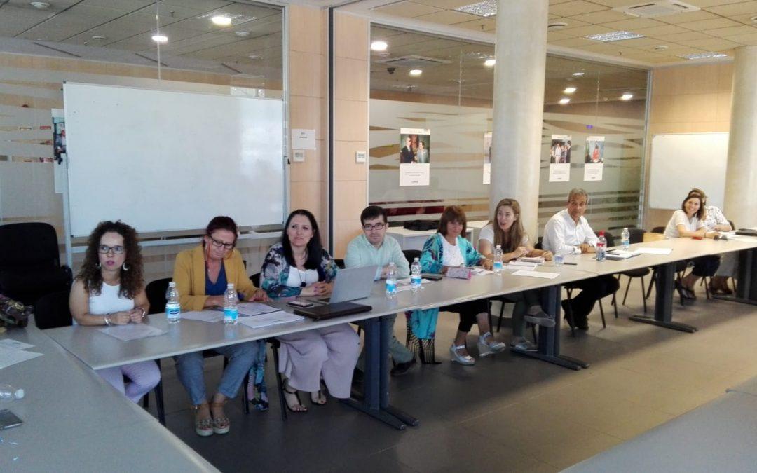 Reunión del Comité ejecutivo del Cermi Andalucía