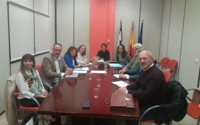 Cermi Andalucía se ha reunido con la Directora General de Familias de la Consejería de Salud y Familias
